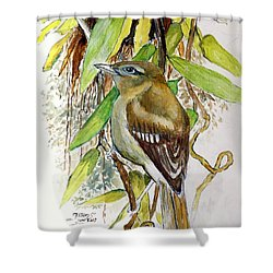 Arctic Warbler Shower Curtain