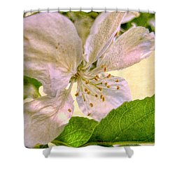 Ardent Spring Shower Curtain