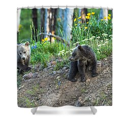 Shower Curtain featuring the photograph Are You Coming With Me by Yeates Photography