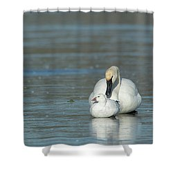 Are You My Mommy? Shower Curtain