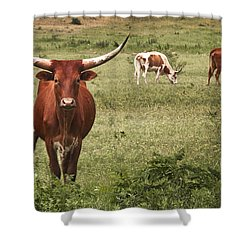 Are You Talking To Me Shower Curtain by Tamyra Ayles