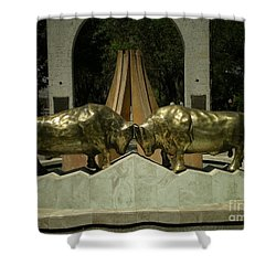 Arequipa Peru Shower Curtain by Carol Ailles