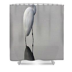 Argent Mirror #2 Shower Curtain by Paul Rebmann