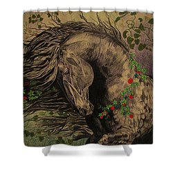 Aristocratic Horse Shower Curtain by Melita Safran