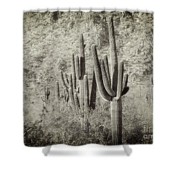 Arizona Desert 2 Shower Curtain