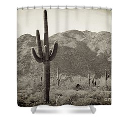 Arizona Desert Shower Curtain