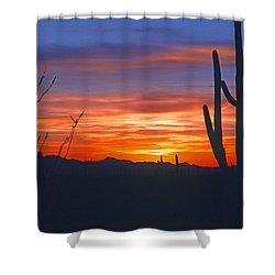 Arizona Desert Sunset Shower Curtain