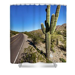 Shower Curtain featuring the photograph Arizona Highway by Ed Cilley