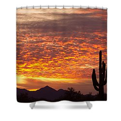 Arizona November Sunrise With Saguaro   Shower Curtain