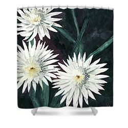 Arizona-queen Of The Night Shower Curtain