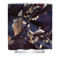 Arizona Rust I Shower Curtain by Carolina Liechtenstein