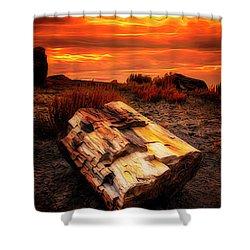 Arizona Sky  ... Shower Curtain