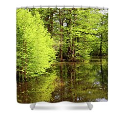Shower Curtain featuring the photograph Arkansas Bottomlands by Nicholas Blackwell