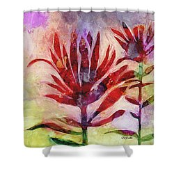 Arkansas Valley Indian Paintbrush Shower Curtain