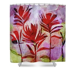 Arkansas Valley Paintbrush Shower Curtain