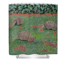 Armadillos In The Yard Shower Curtain