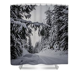 Around The Bend Shower Curtain by Albert Seger