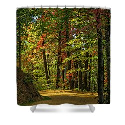 Around The Curve Shower Curtain