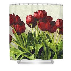 Array Of Red Tulips Shower Curtain by Nadalyn Larsen