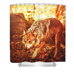 Arrival Of Autumn Shower Curtain