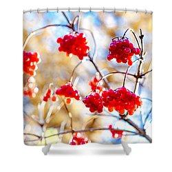 Shower Curtain featuring the photograph Arrowwood Berries by Alexander Senin