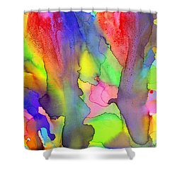 3 Art Abstract Painting Modern Color Signed Robert R Erod Shower Curtain