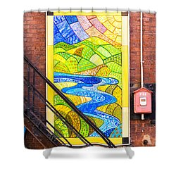 Art And The Fire Escape Shower Curtain by Tom Singleton