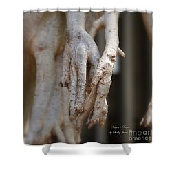 Art Around The World Project Shower Curtain