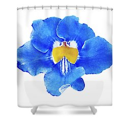 Art Blue Beauty Shower Curtain