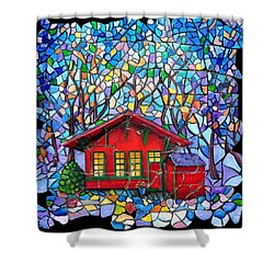 Art Depot Shower Curtain