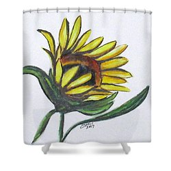 Art Doodle No. 22 Shower Curtain