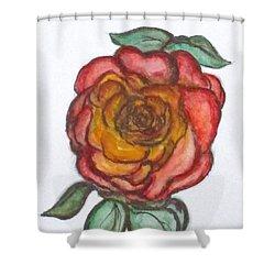Art Doodle No. 30 Shower Curtain
