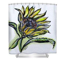 Art Doodle No. 5 Shower Curtain