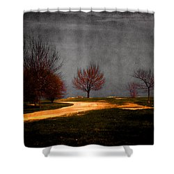 Art In The Park Shower Curtain
