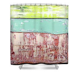 Art Print Abstract 19 Shower Curtain