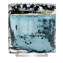 Art Print California 08 Shower Curtain