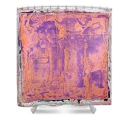 Art Print California 09 Shower Curtain