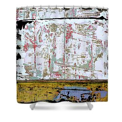Shower Curtain featuring the painting Art Print Square 9 by Harry Gruenert