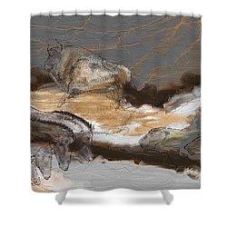 Art Rupestre Shower Curtain