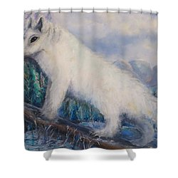 Shower Curtain featuring the painting Artic Fox by Bernadette Krupa
