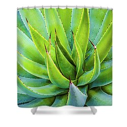 Shower Curtain featuring the photograph Artichoke Agave Desert Plant by Julie Palencia
