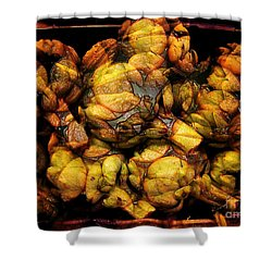 Artichoke Evolution 3 Shower Curtain