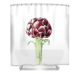 Artichoke From Roman Market Shower Curtain by Alison Cooper