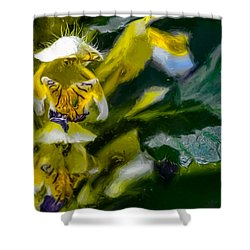Artistic Butterfly In Knee Shower Curtain by Leif Sohlman