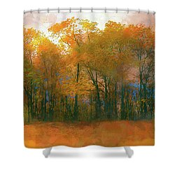 Artistic Fall Colors In The Blue Ridge Ap Shower Curtain