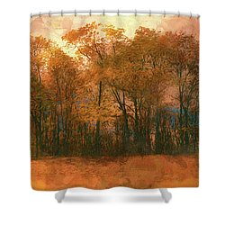 Artistic Fall Colors In The Blue Ridge Fx Shower Curtain by Dan Carmichael
