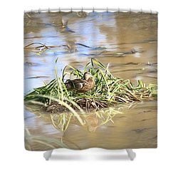 Artistic Lifeguard Shower Curtain by Leif Sohlman