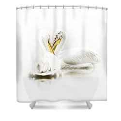 Artistic Photo Of Two Pelican Birds Shower Curtain
