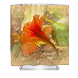 Artistic Red And Orange Shower Curtain by Leif Sohlman