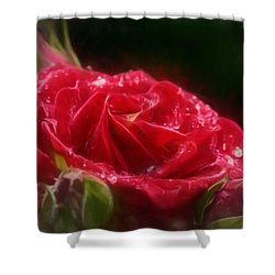 Shower Curtain featuring the photograph Artistic Rose After Rain by Leif Sohlman